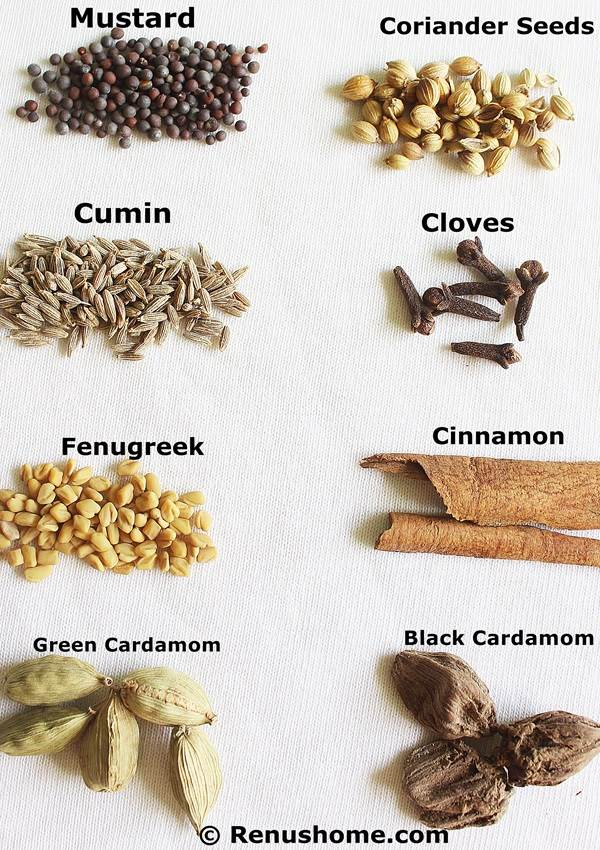 Glossary Of Indian Spices In English Hindi
